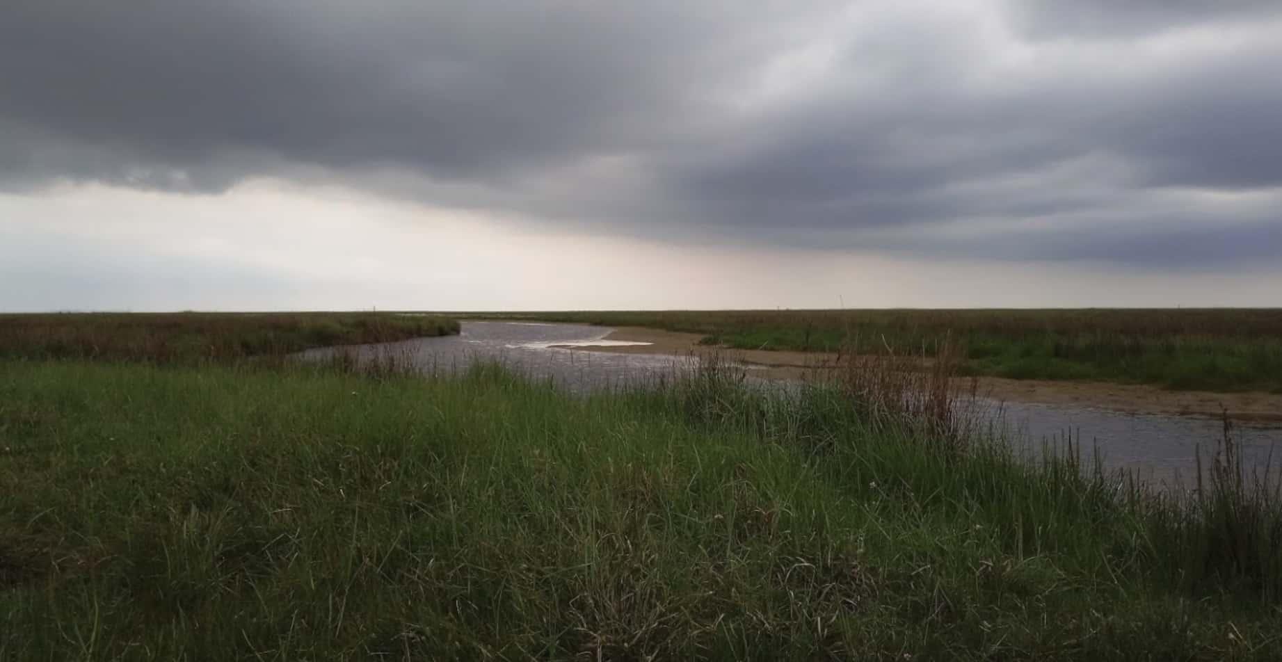 Фотосъемка в пасмурную погоду