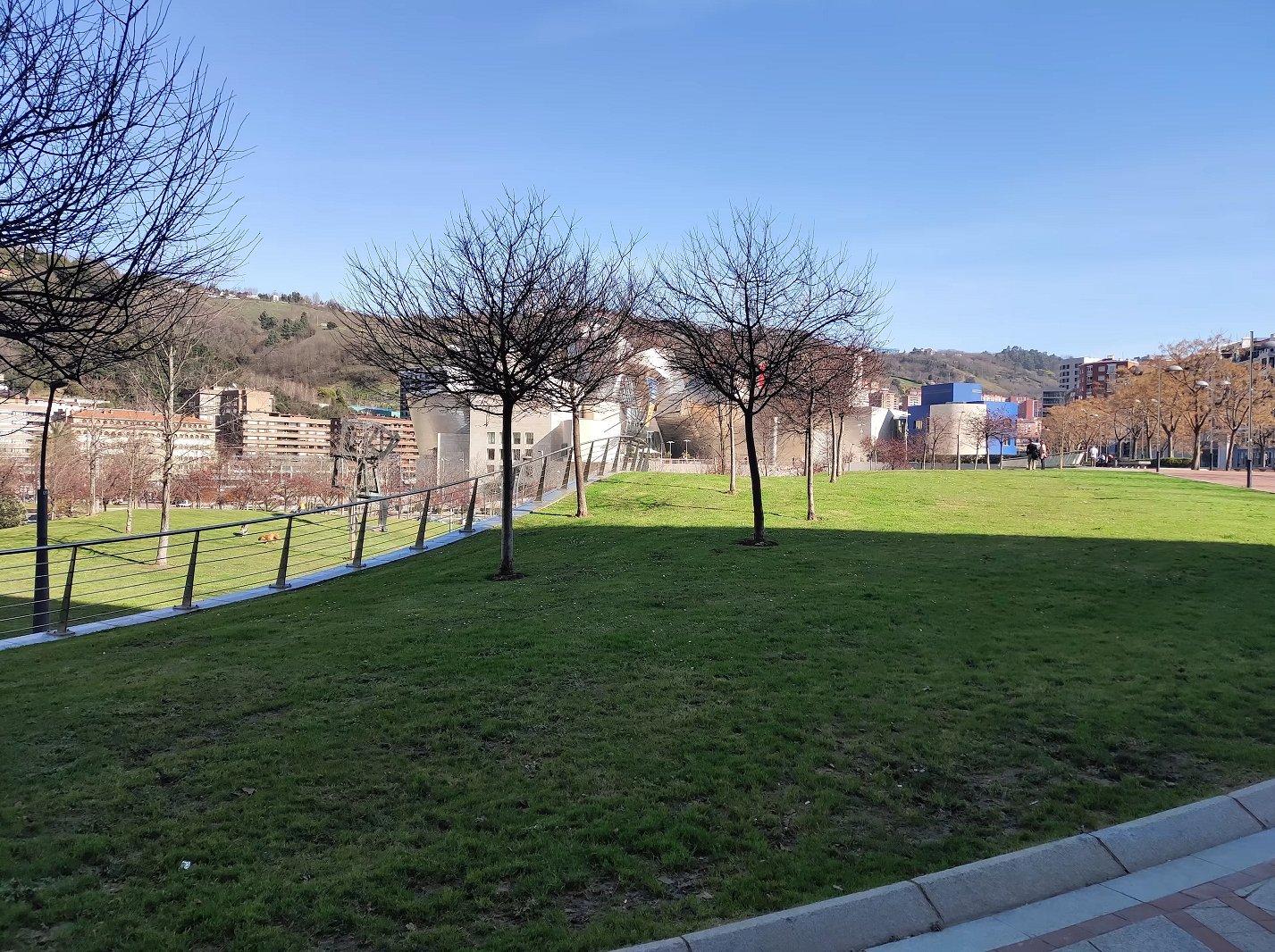 Пейзажный снимок